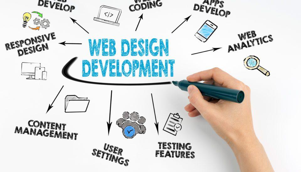 website-design-top-10-questions