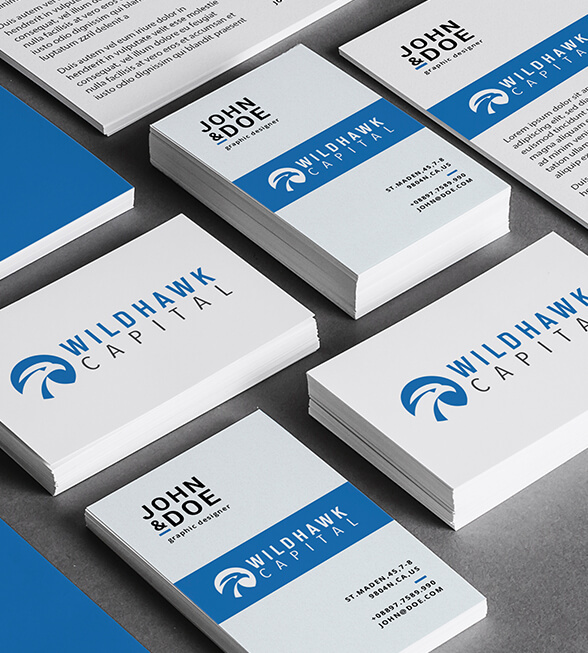 Wild Hawk Capital Logo Design
