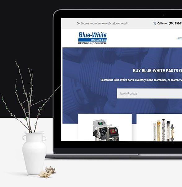 Blue White8