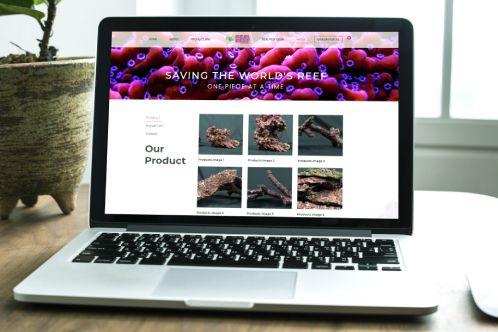 Abroad Website Portfolio2